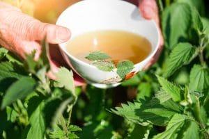 Napary ziołowe oczyszczanie jelit