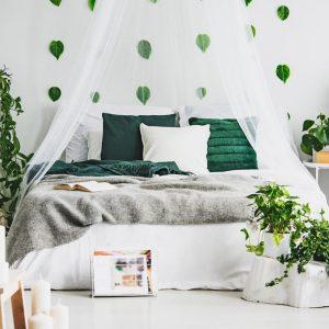 Kwiaty doniczkowe do sypialni