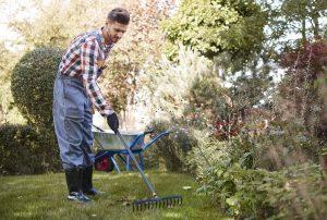 Grabienie trawnika