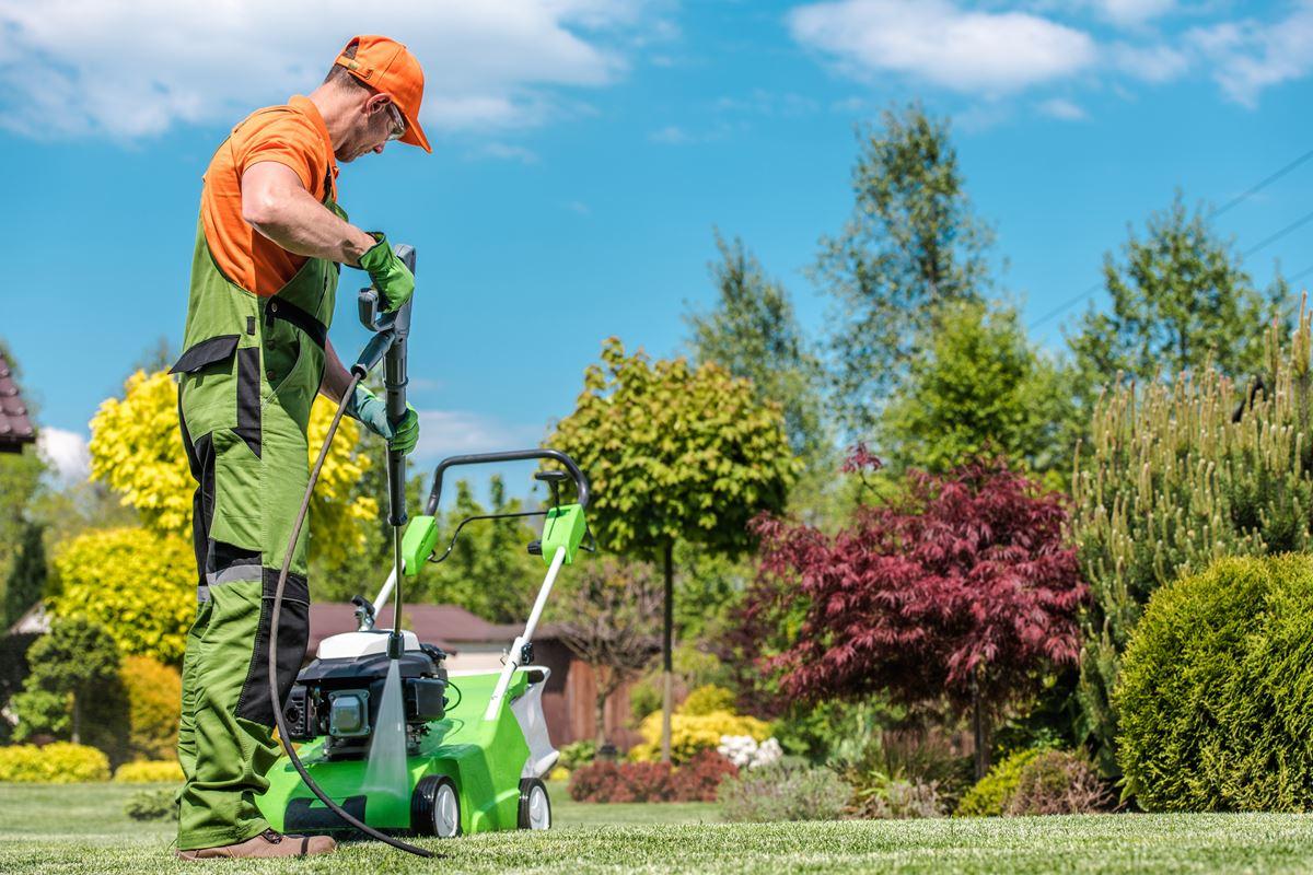 Jak dbać o ogród