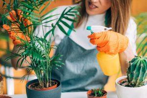 Naturalna ochrona roślin
