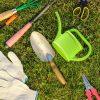 Jak dbać o trawę
