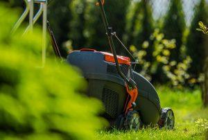 Kiedy kosić trawę