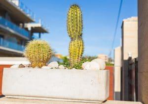 Donice betonowe do ogrodu